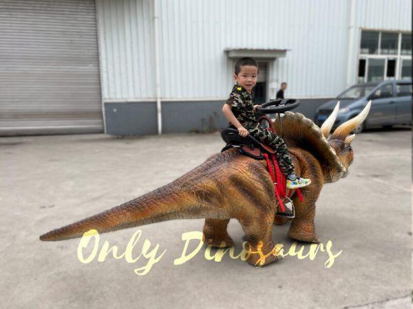 Wonderful-Walking-Dinosaur-Triceratops-Kids-Ride6