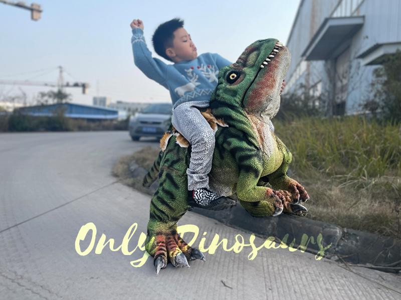 35-Unique-Dinosaur-Cake-Ideas-Everybody-Will-Love-Enjoy-T-Rex-Baby-Dinosaur-Costume