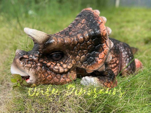 A Cute Brown Baby Animatronic Triceratops