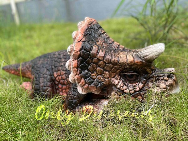 The Cute Baby Animatronic Triceratops