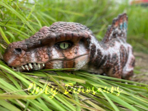 Adorable-Baby-Spinosaurus-False-Arm-Puppet2