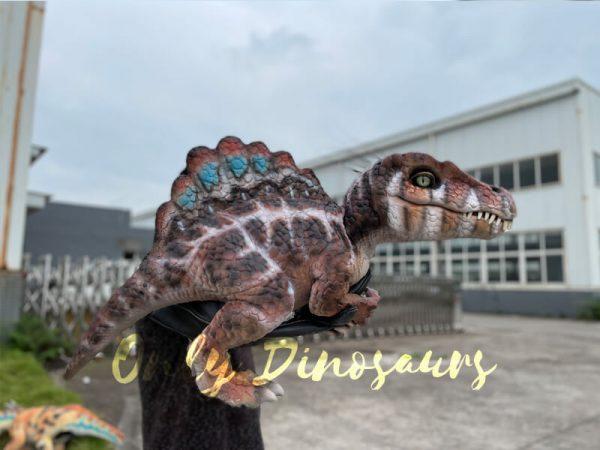 Adorable-Baby-Spinosaurus-False-Arm-Puppet5
