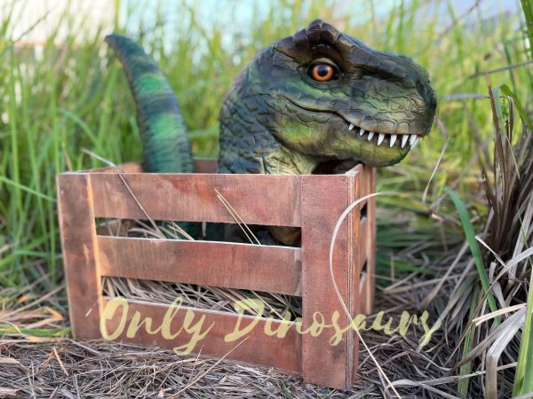 Adorable-Crate-Baby-T-Rex-Puppet-5
