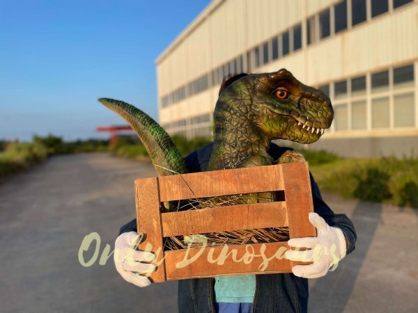 Adorable-Crate-Baby-T-Rex-Puppet-6