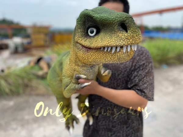 Adorable-T-Rex-Hand-Puppet-for-Party5