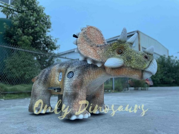 Baby-Triceratops-Dino-Ride-for-Kids-Coverment