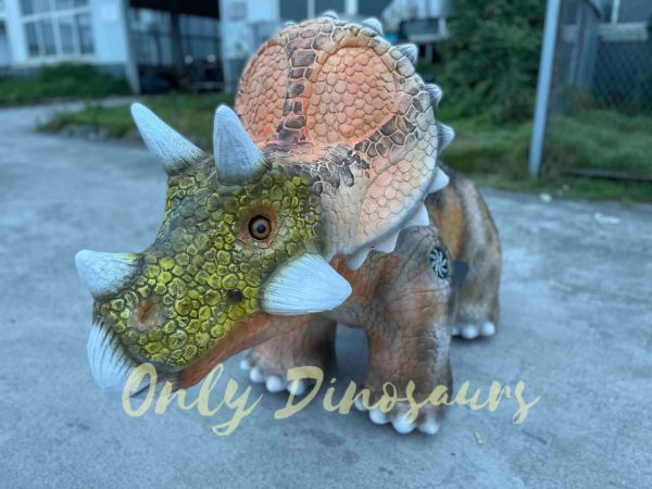 Baby-Triceratops-Dino-Ride-for-Kids-Part3