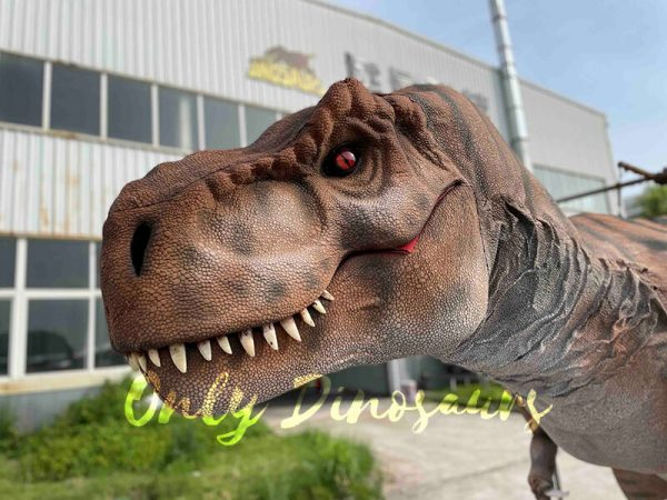 The Head of a Brown Dinosaur with Black Stripes