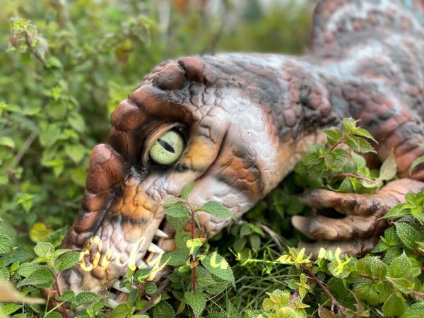 Colorful-Spinosaurus-Hand-Puppet-for-Sale1
