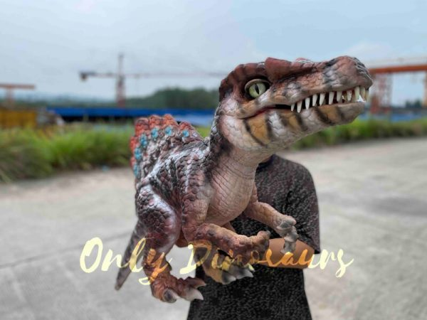 Colorful-Spinosaurus-Hand-Puppet-for-Sale5