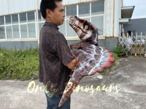 Colorful-Spinosaurus-Hand-Puppet-for-Sale6