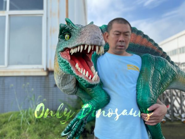 Colorful-Spinosaurus-Shoulder-Puppet-for-Sale5