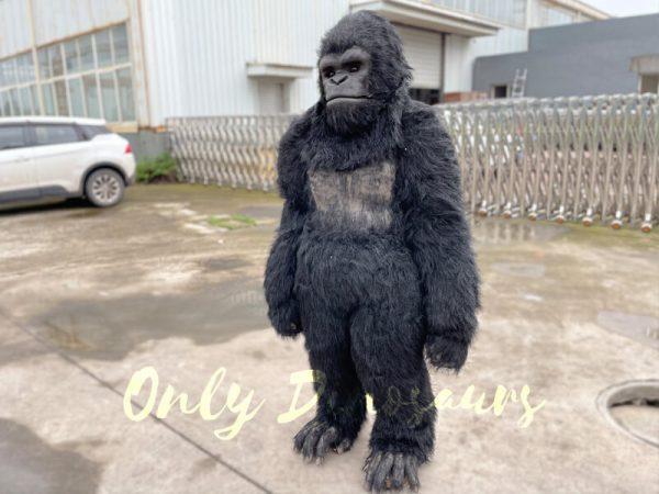 Custom-Gorilla-Animal-Costume-for-Show5