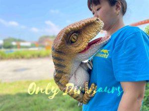 Exquisite Velociraptor Hand Dino Puppet for Sale