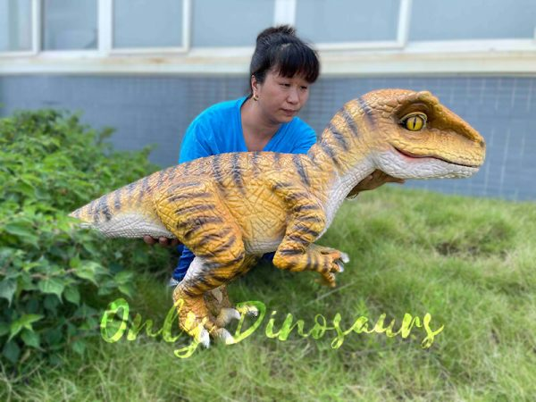 A Woman Carrying a Brown Baby Velociraptor with Black Stripes on the Glass