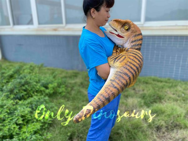 A Woman Carrying a Brown Baby Velociraptor with Black Stripes