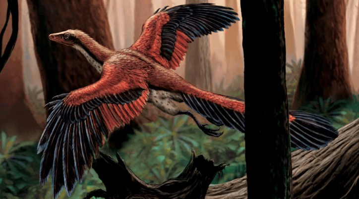Flying-Archaeopteryx-in-the-Woods