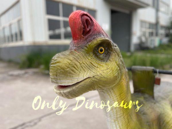 Kiddie-Dino-Brachiosaurus-Ride-for-Playground1