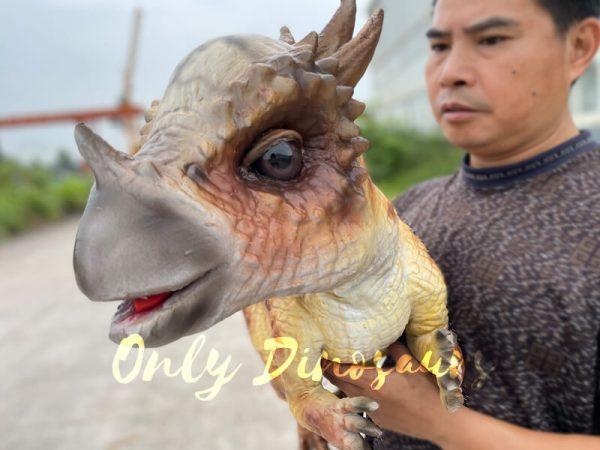 Lifelike-Stygimoloch-Baby-Dino-Puppet4