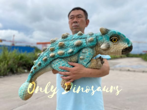 Realistic-Ankylosaur-Baby-Dino-Puppet6