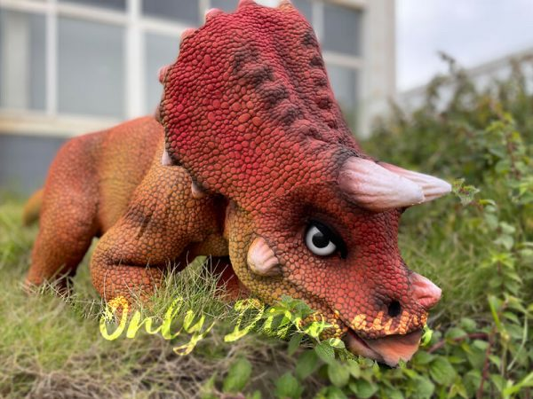 Realistic-Baby-Dino-Triceratops-Puppet1