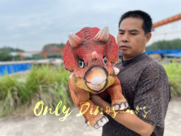 Realistic-Baby-Dino-Triceratops-Puppet5