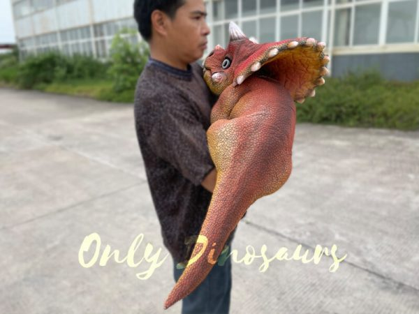 Realistic-Baby-Dino-Triceratops-Puppet6