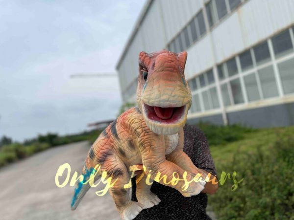 Realistic-Brachiosaurus-Baby-Dino-Puppet4