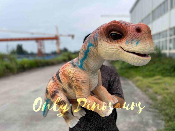 Realistic-Brachiosaurus-Baby-Dino-Puppet6