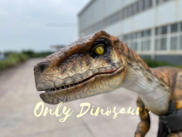 Realistic-False-Arm-Raptor-Shoulder-Puppet1