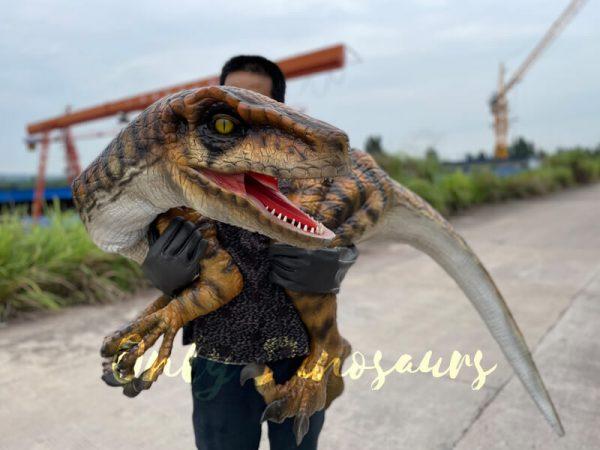 Realistic-False-Arm-Raptor-Shoulder-Puppet4