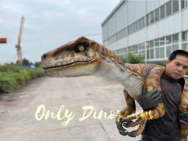 Realistic-False-Arm-Raptor-Shoulder-Puppet5