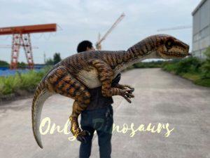 Realistic False Arm Raptor Shoulder Puppet