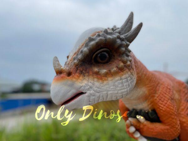 Realistic-False-Arm-Stygimoloch-Dino-Puppet4