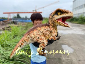 Realistic Feathered Raptor False Arm Puppet