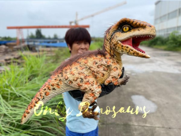 Realistic-Feathered-Raptor-False-Arm-Puppet6