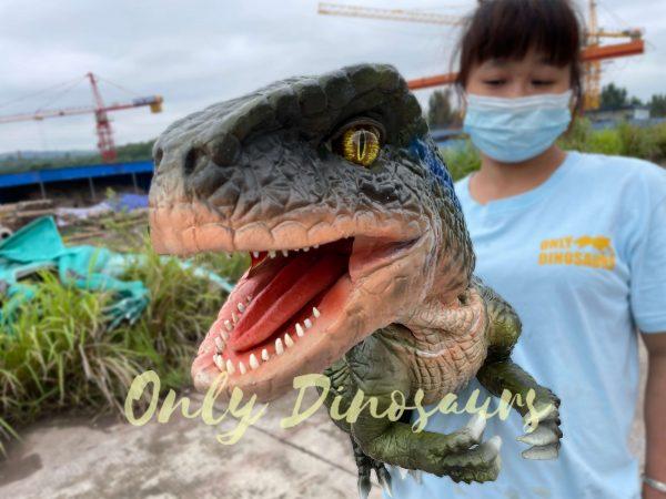Realistic-Velociraptor-Hand-Dino-Puppet-4