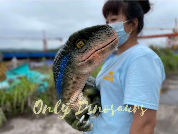 Realistic-Velociraptor-Hand-Dino-Puppet-5