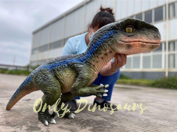 Realistic-Velociraptor-Hand-Dino-Puppet6