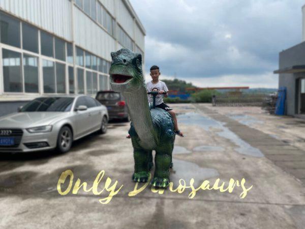 Realistic-Walking-Ruyangosaurus-Dino-Kiddie-Ride4