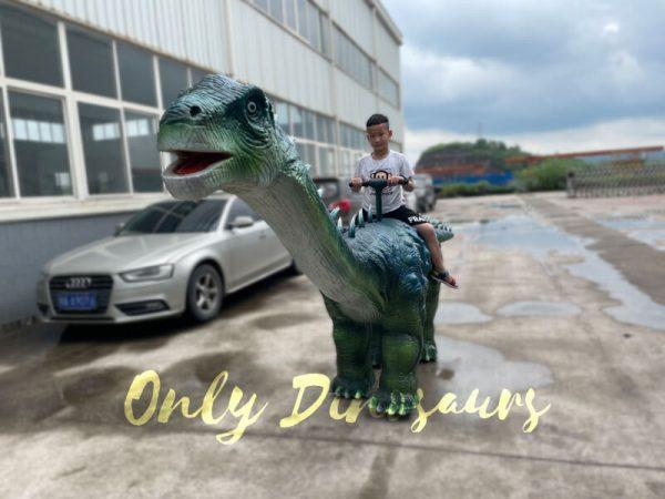 Realistic-Walking-Ruyangosaurus-Dino-Kiddie-Ride5
