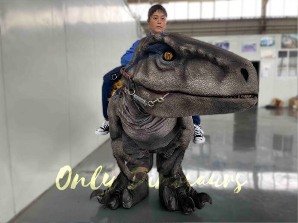 A Woman Riding on a Velociraptor and the Head of the Raptor