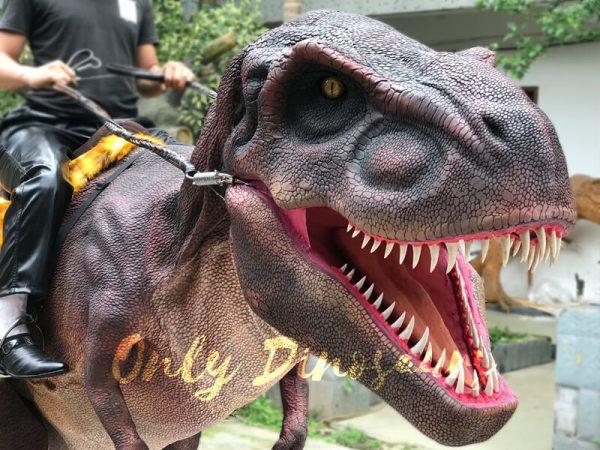 Stunning-Dinosaur-T-Rex-Stilts-Costume-for-Party4