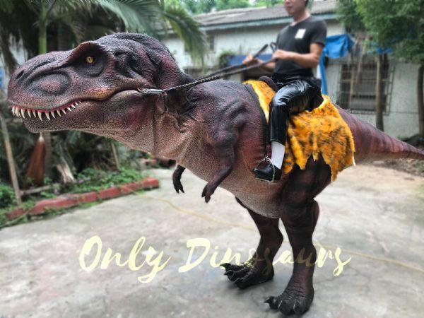 Stunning-Dinosaur-T-Rex-Stilts-Costume-for-Party6