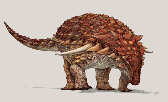 Top-15-Coolest-Dinosaurs-to-Ever-Lived-on-Earth-Borealopelta-markmitchelli