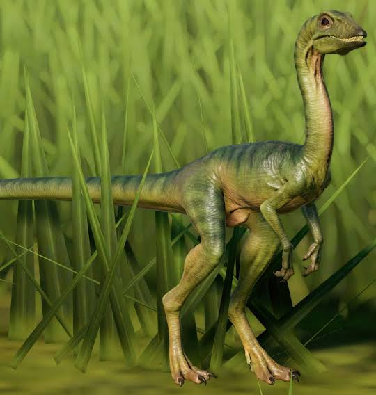 Top-15-Coolest-Dinosaurs-to-Ever-Lived-on-Earth-Compsognathus