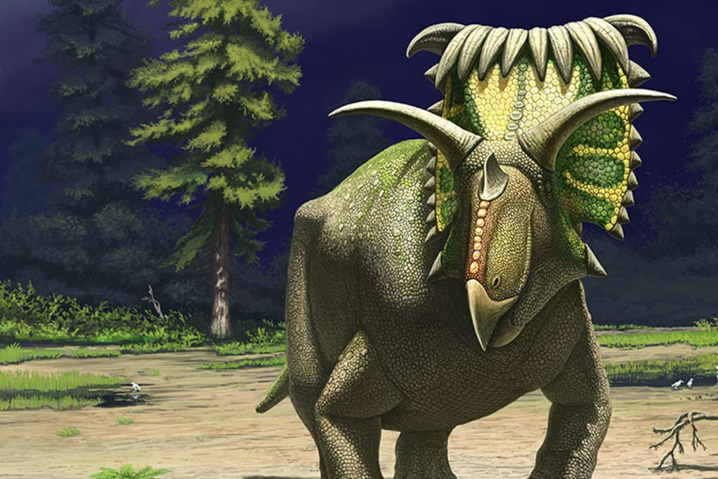 Top-15-Coolest-Dinosaurs-to-Ever-Lived-on-Earth-Kosmoceratops