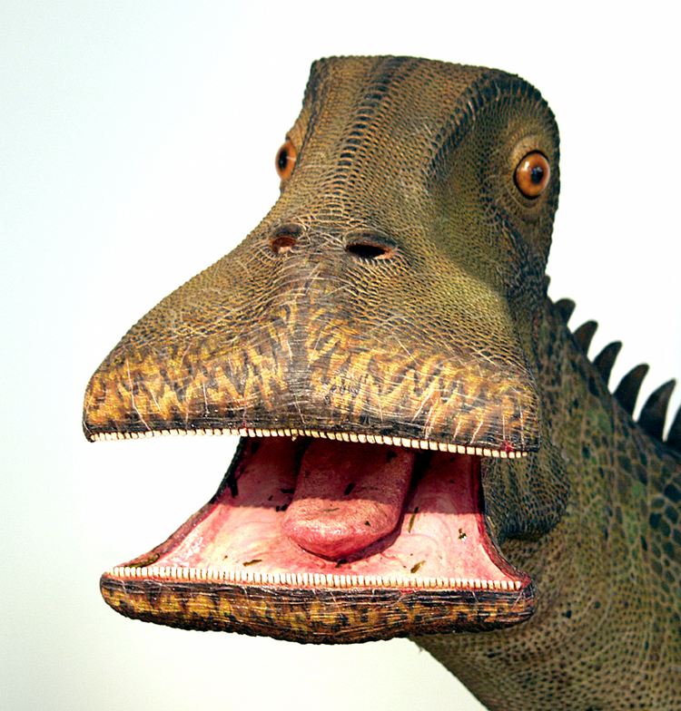 Top-15-Coolest-Dinosaurs-to-Ever-Lived-on-Earth-Nigersaurus