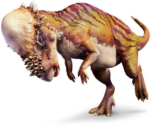 Top-15-Coolest-Dinosaurs-to-Ever-Lived-on-Earth-Pachycephalosaurus