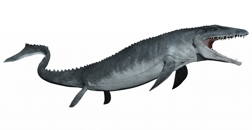 Top-15-Popular-Fossil-and-Dinosaur-Pokemons-That-You-Will-Like-Mosasaurus-1